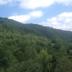 Smokey-Mountains_-045